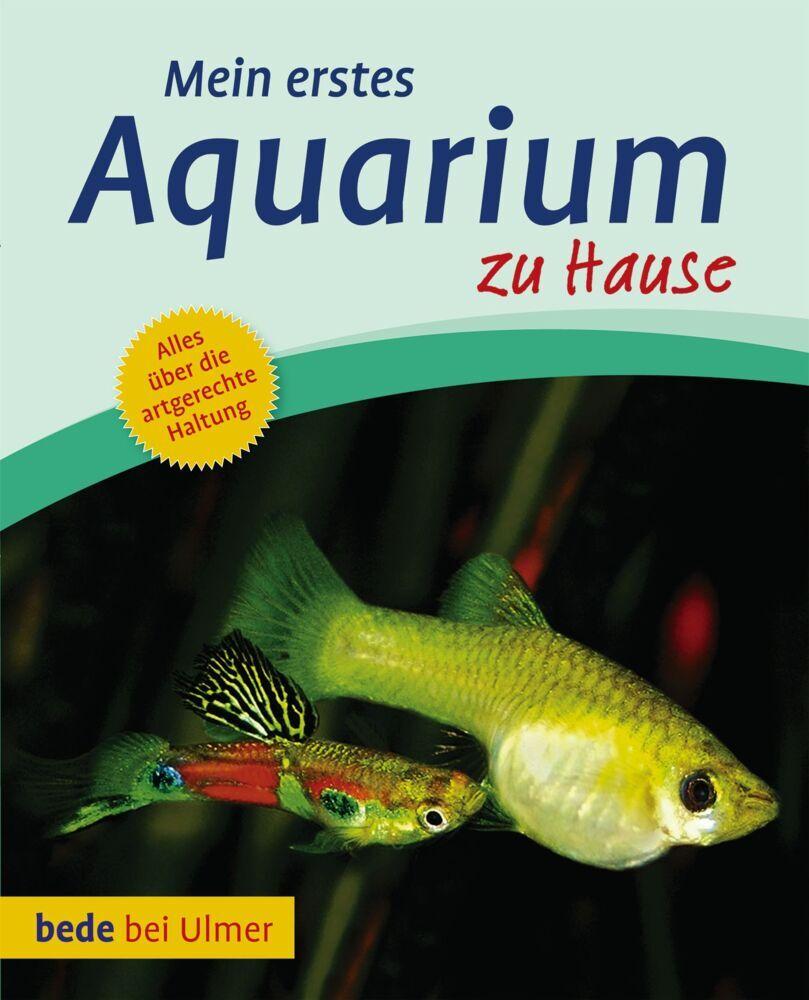 Mein erstes Aquarium zu Hause als Buch von Bern...