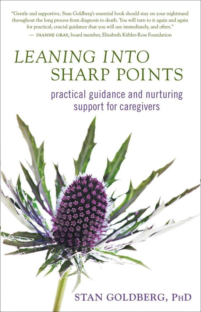 Leaning into Sharp Points als eBook Download vo...