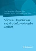 Scheitern - Organisations- und wirtschaftssoziologische Analysen