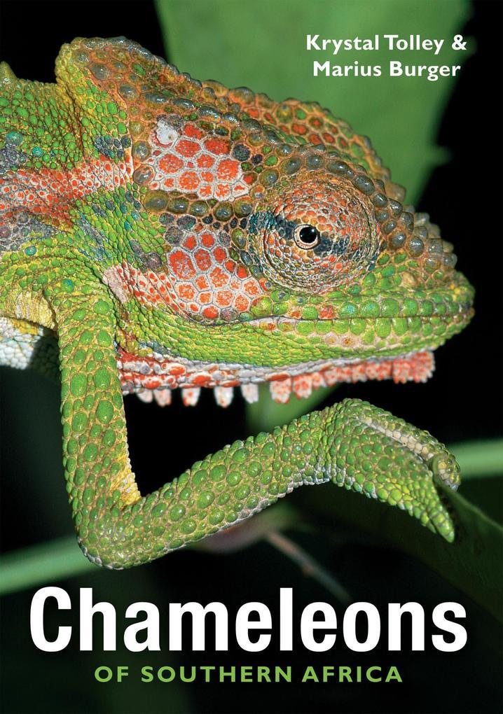Chameleons of Southern Africa als eBook Downloa...