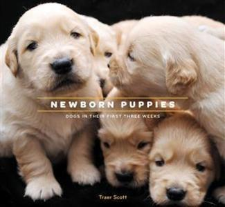 Newborn Puppies als eBook Download von Traer Scott