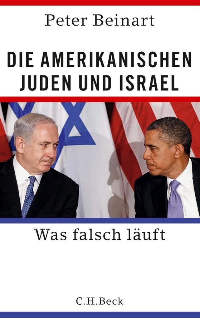 Die amerikanischen Juden und Israel als eBook epub
