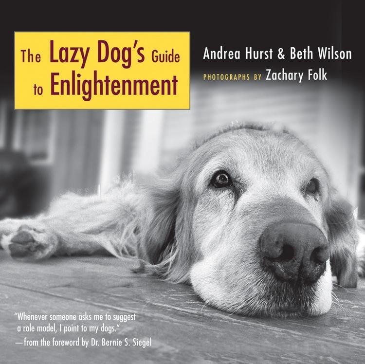 The Lazy Dog´s Guide to Enlightenment als eBook...