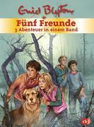Fünf Freunde. Sammelband 01