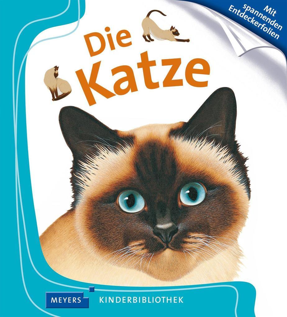 Die Katze als Buch von