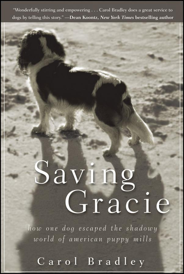 Saving Gracie als eBook Download von Carol Bradley
