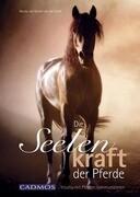 Die Seelenkraft der Pferde
