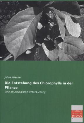 Die Entstehung des Chlorophylls in der Pflanze ...