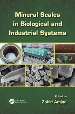 Mineral Scales in Biological and Industrial Systems als Buch (gebunden)