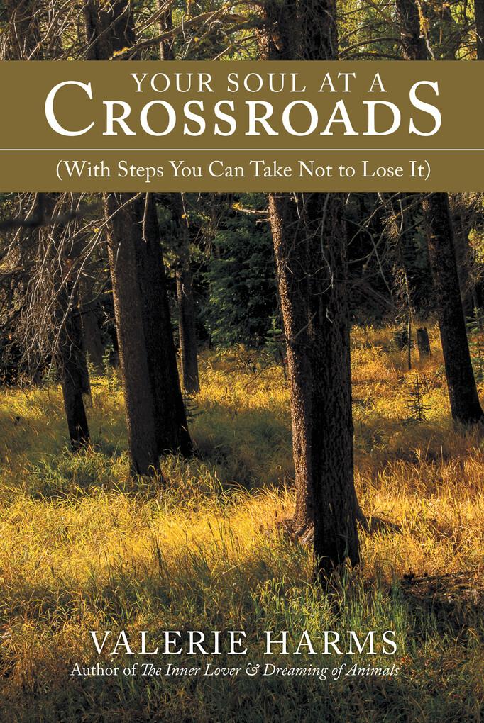 Your Soul at a Crossroads als eBook Download vo...