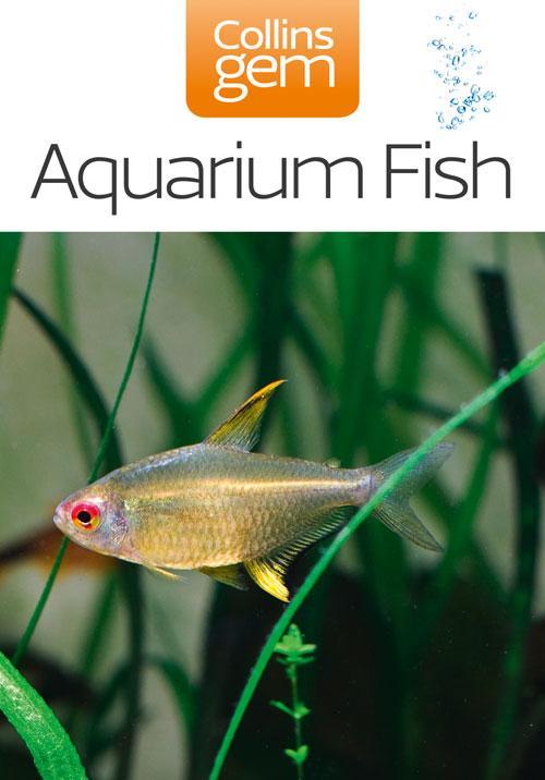 Aquarium Fish (Collins Gem) als eBook Download von