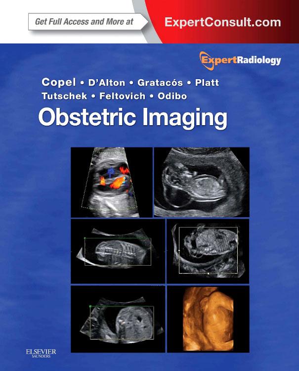 Obstetric Imaging E-Book als eBook Download von...