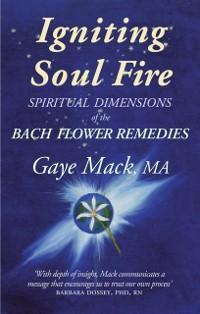 Igniting Soul Fire als eBook Download von Gaye ...