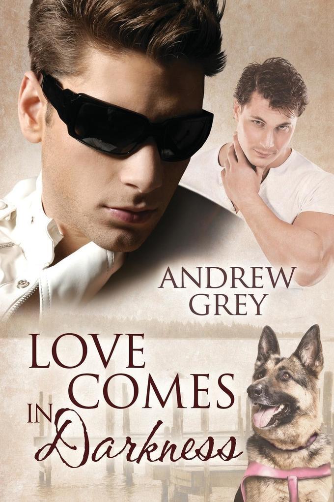 Love Comes in Darkness als Buch von Andrew Grey