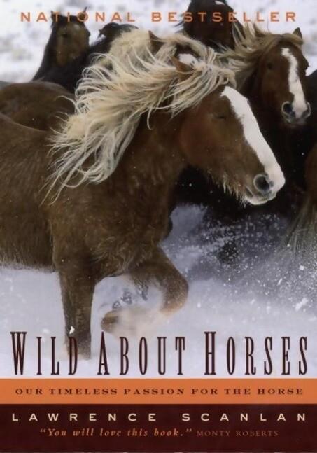 Wild About Horses als eBook Download von Lawren...