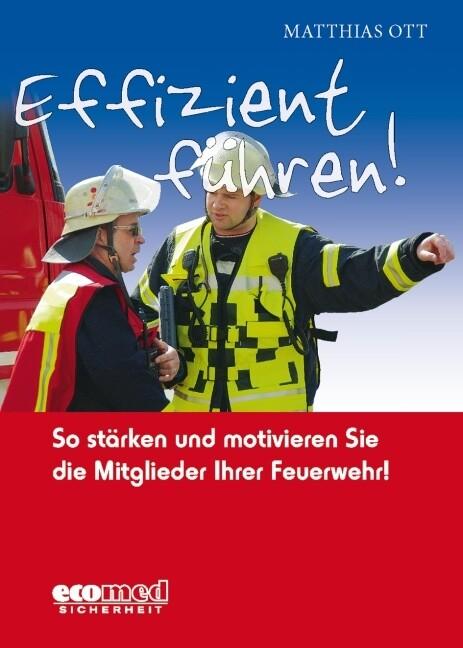 Effizient führen! als Buch von Matthias Ott