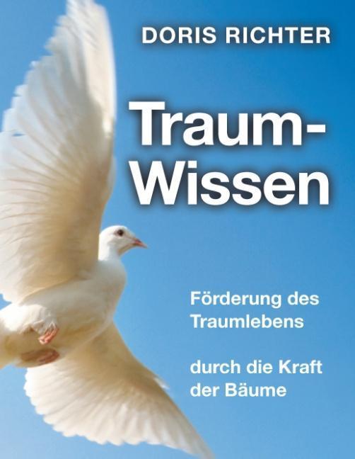 Traum - Wissen als Buch von Doris Richter