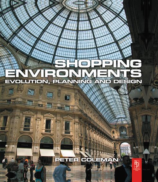 Shopping Environments als eBook Download von Pe...