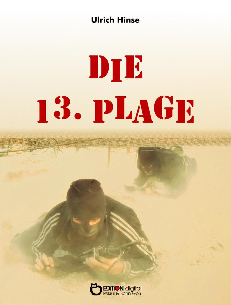 Die 13. Plage als eBook