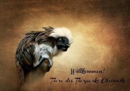 Willkommen! Tiere des Tierparks Chemnitz (Poste...