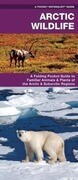 Arctic Wildlife: An Folding Pocket Guide to Familiar Animals & Plants of the Arctic & Subarctic Regions