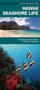 Hawaii Seashore Life: A Folding Pocket Guide to Familiar Plants and Animals
