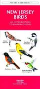 Caribbean Birds: An Introduction to Familiar Species