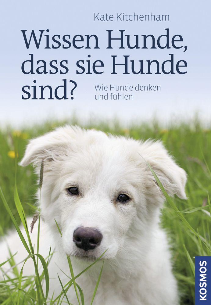 Wissen Hunde, dass sie Hunde sind? als Buch von...