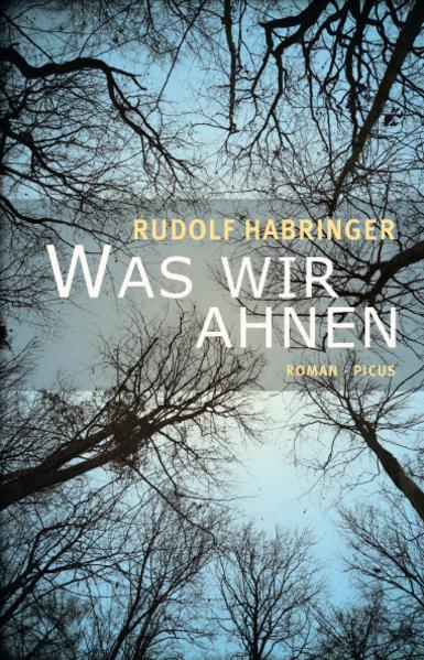 Was wir ahnen als Buch von Rudolf Habringer