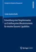 Entwicklung einer Vorgehensweise zur Erstellung eines Messinstruments für einzelne Dynamic Capabilities
