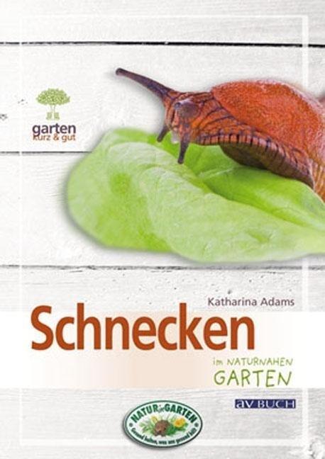 Schnecken im naturnahen Garten als Buch von Eng...