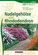 Nadelgehöze und Rhododendron