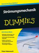 Strömungsmechanik für Dummies