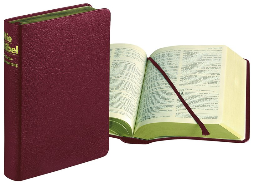 Die Bibel (Ld. rot). (Katholisches Bibelwerk) als Buch
