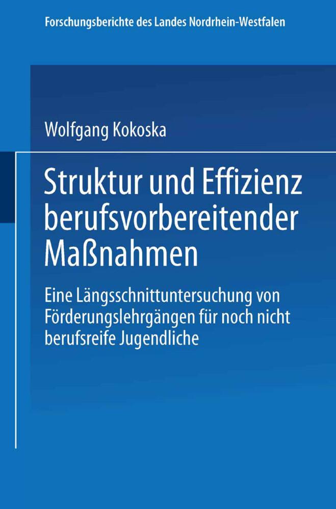 Struktur und Effizienz berufsvorbereitender Maß...