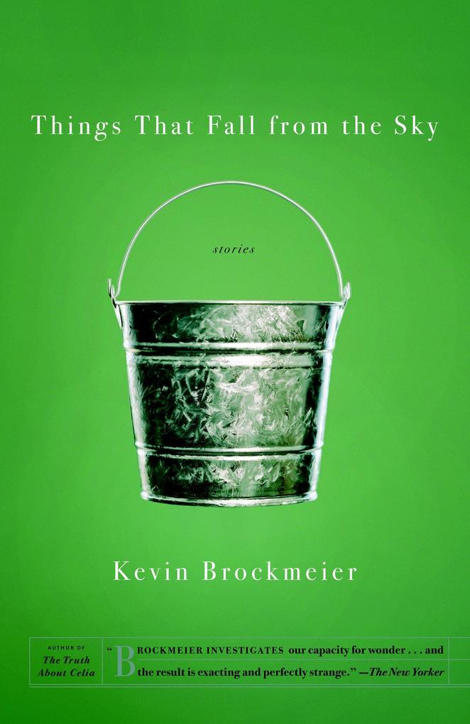 Things That Fall from the Sky als Taschenbuch