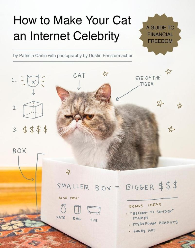 How to Make Your Cat an Internet Celebrity als ...