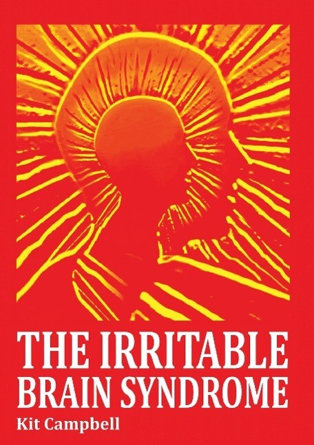 The Irritable Brain Syndrome als Taschenbuch von
