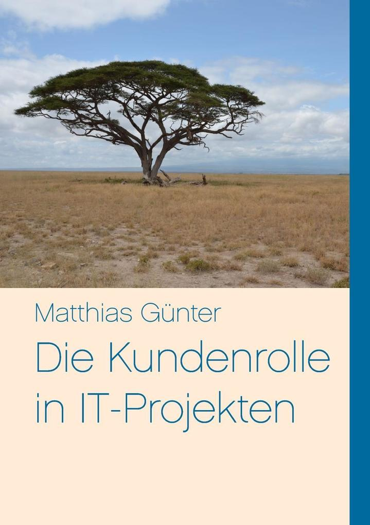 Die Kundenrolle in IT-Projekten als eBook Downl...