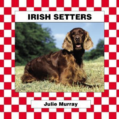 Irish Setters als Buch