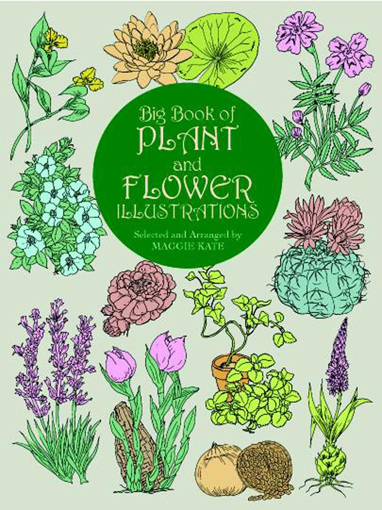 Big Book of Plant and Flower Illustrations als ...