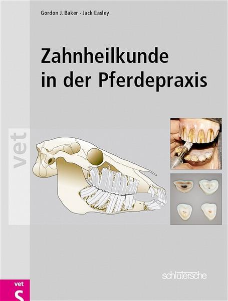 Zahnheilkunde in der Pferdepraxis als Buch (gebunden)