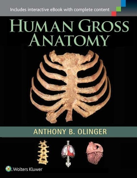 Human Gross Anatomy als Buch (gebunden)