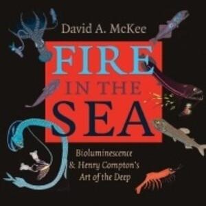 Fire in the Sea als Buch (gebunden)