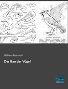 Der Bau der Vögel