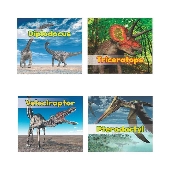 All about Dinosaurs als Buch (gebunden)