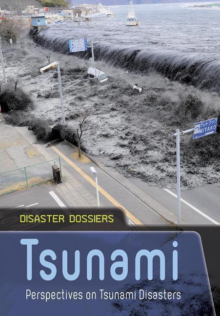 Tsunami: Perspectives on Tsunami Disasters als Taschenbuch