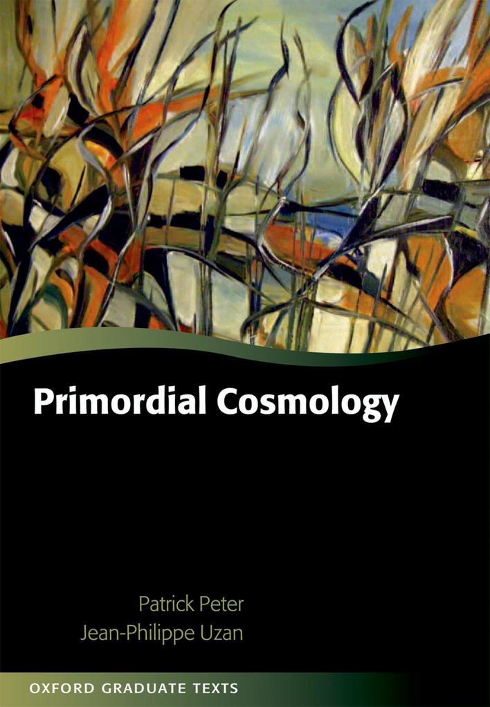 Primordial Cosmology als eBook pdf