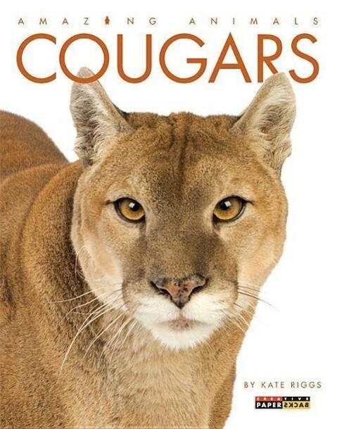 Cougars als Taschenbuch