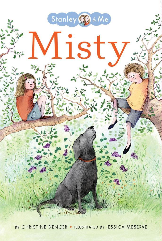 Misty als Buch (gebunden)
